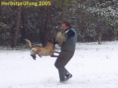 2005-Herbstpruefung_DCP_0470-400x300
