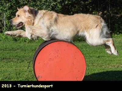 2013-Turnierhundesport_Hundesport-2021